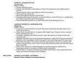 Resume format for Hospital Job Hospital Administrator Resume Samples Velvet Jobs