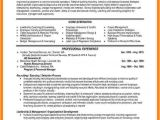 Resume format for Hr Job 9 Cv Professional Example theorynpractice