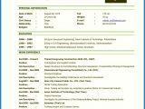 Resume format for Job Interview Pdf 13 Cv In Applications for A Teaching Job Letter Setup