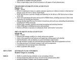 Resume format for Private Job Private Equity Fund Accountant Resume Samples Velvet Jobs
