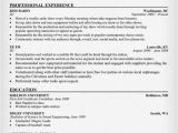 Resume format for Radio Jockey Fresher Disc Jockey Resume Resumecompanion Com Resume Examples