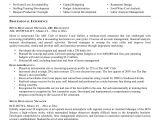 Resume format for Restaurant Job Restaurant Manager Resume Samples Pdf Printable Planner