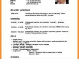 Resume format In English Word 6 Cv forms English Download theorynpractice