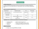 Resume format In Word 2007 9 Cv format Ms Word 2007 theorynpractice