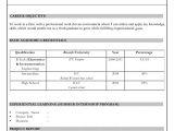 Resume format In Word 2007 Resume format Download In Ms Word 2007