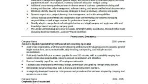 Resume format In Word File for Experienced Sample Accountant Resume 14 Examples In Word Pdf