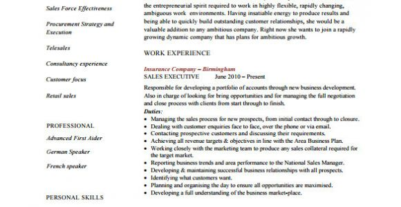 Resume format Word File for Sales Executive Executive Resume Template 14 Free Word Excel Pdf
