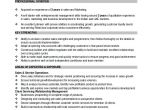 Resume format Word File for Sales Executive Sample Sales Manager Resume 9 Examples In Word Pdf