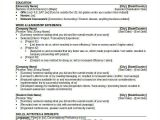 Resume format Word for Bank 14 Banking Resume Templates In Word Free Premium