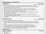 Resume format Word for Banking Sector Banking Resume Sample Resumecompanion Com Finance