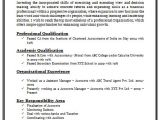 Resume format Word for Experienced It Professionals Over 10000 Cv and Resume Samples with Free Download