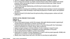 Resume format Word for Manager Level Project Manager Level Resume Samples Velvet Jobs