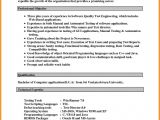 Resume format Word New 13 Cv Resume Template Microsoft Word theorynpractice