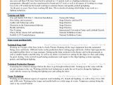 Resume format Word New 6 Curriculum Vitae Download In Ms Word theorynpractice