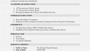 Resume Guru Profesional Foto Contoh Curriculum Vitae Jadi Guru 33 Di format