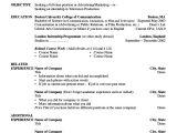 Resume Objective for Basic Resume Basic Resume Example 8 Samples In Word Pdf
