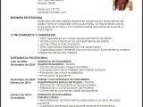 Resume Profesional De Enfermeria Curriculum Vitae De Enfermeria