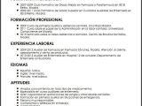 Resume Profesional De Enfermeria Modelo Cv Auxiliar De Enfermeria Principiante Micvideal Es