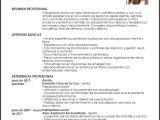 Resume Profesional De Trabajo social Modelo Curriculum Vitae Trabajadora social Livecareer