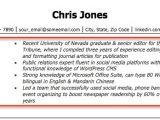 Resume Profile Samples Resume Profile Examples Writing Guide Resume Companion