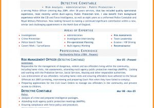 Resume Sample Word Doc 8 Cv In Word Document theorynpractice