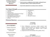Resume Sample Xls 12 Sample Project Plan Template Excel Exceltemplates