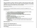 Resume Samples for Experienced Marketing Professionals Over 10000 Cv and Resume Samples with Free Download