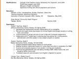 Resume Samples for Faculty Positions Sample Preschool Teacher Resume Objective
