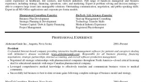 Resume Samples for It Company Company Resume format Free Excel Templates