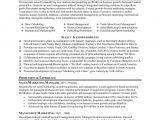 Resume Samples for Marketing Professionals Marketing Resume Sample