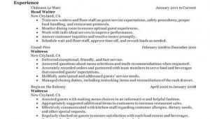Resume Samples for Restaurant Servers 18 Amazing Restaurant Bar Resume Examples Livecareer