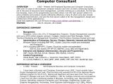 Resume Samples for Self Employed Individuals Resume Samples for Self Employed Individuals Luxury Sample