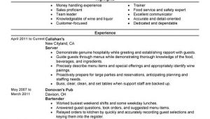 Resume Samples for Server Position Servers Resume Examples Free to Try today Myperfectresume