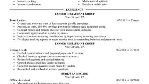 Resume Samples for Team Leader Position Unforgettable Team Lead Resume Examples to Stand Out