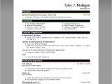 Resume Samples In Word 2007 Resume Template Microsoft Word 2007 Health Symptoms and