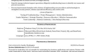 Resume Summary Examples for It Professionals It Professional Resume Sample Monster Com