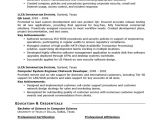 Resume Summary Examples for It Professionals It Resume Sample Professional Resume Examples topresume