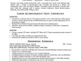 Resume Summary Examples for It Professionals Professional Resume Summary 2016 Samplebusinessresume