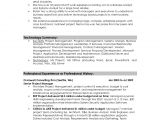 Resume Summary for It Professional Professional Summary Resume Examples Professional Resume