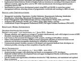 Resume Summary for It Professional Project Manager Resume Summary Ipasphoto