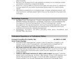 Resume Summary Samples Best Resume Samples 2016 Best Resume format