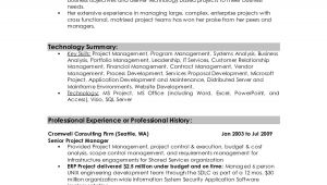 Resume Summary Samples for It Professionals Professional Summary Resume Examples Professional Resume