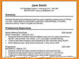 Resume Summary Samples Resume Summary Examples