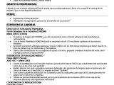 Resume Templates En Espanol Disenos De Curriculum Vitae Plantilla De Curriculum En Ingles