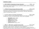 Resume Templates En Espanol Resume En Espanol Resume Ideas