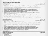 Resume Templates for Banking Jobs Investment Investment Banking Resumes Blog