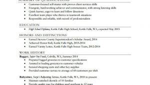 Resume Templates for High School 24 Best Student Sample Resume Templates Wisestep