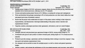 Resume Templates for Project Managers Project Management Resume Amplifiermountain org