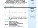 Resumen Personal Y Profesional Curriculum Vitae Modelo4b Azul Modelo Curriculum
