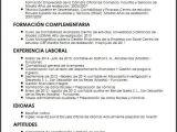 Resumen Profesional Y Laboral Para Cv Ejemplo Cv Contable Micvideal